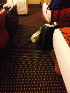 Hotel room has nice long lunge-worthy hallway (10 one way before turning around).
